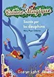 La cabane magique, Sauvés par les dauphins !