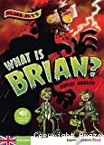 What is Brian ?